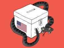 ballot-box-snake